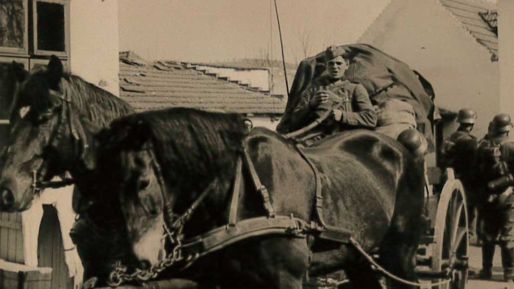 Soldat Karl Paulmaier auf einem Pferdewagen